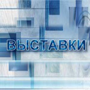 Выставки Соликамска